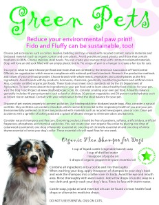 Green Pet Flier